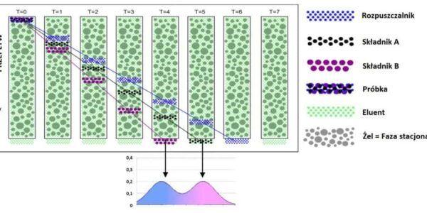 Analiza białek za pomocą chromatografii wykluczania