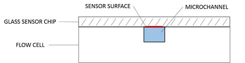 Cela przepływowa i obszar sensora SPR