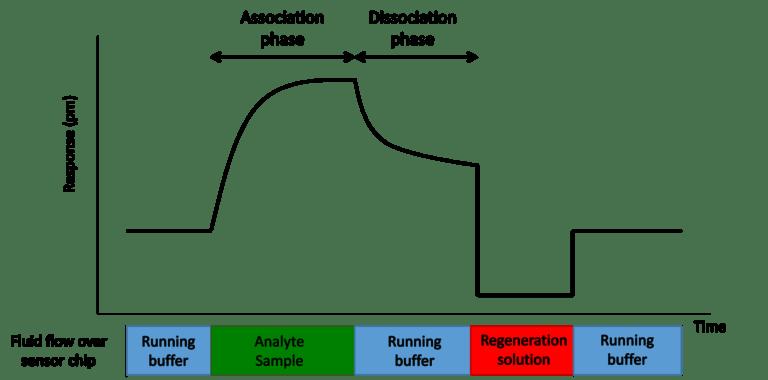 Powierzchniowy rezonans plazmonowy SPR wykres